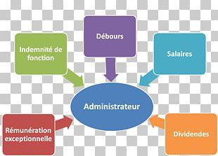 Board Member Board Of Directors Organization Remuneration Administrateur Salarié PNG