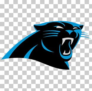 Carolina Panthers NFL Tampa Bay Buccaneers New England Patriots New York Jets PNG