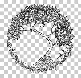 Tree Of Life Drawing Doodle PNG