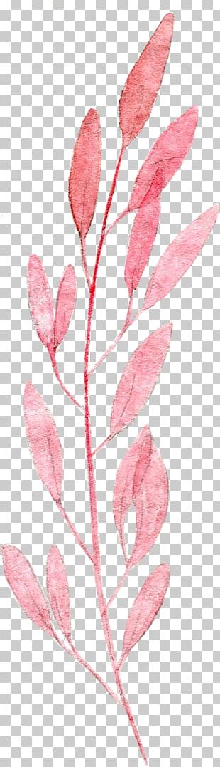 Watercolor Painting Leaf Pink Drawing PNG