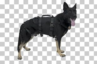 Dog Harness Police Dog Abseiling Search And Rescue Dog Chinese Crested Dog PNG