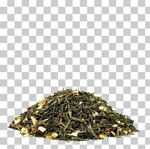 Green Tea Hōjicha Nilgiri Tea Earl Grey Tea PNG