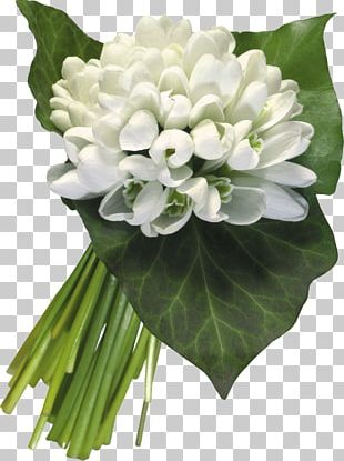 International Women's Day March 8 Holiday Ansichtkaart Flower Bouquet PNG