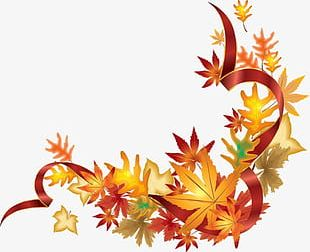 Fall Maple Leaf Border PNG