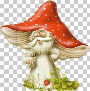 Animaatio Mushroom Fungus PNG
