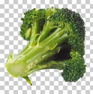Broccoli Food Eating Nutrition Brussels Sprout PNG