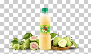 Juice Fizzy Drinks Food Common Guava PNG