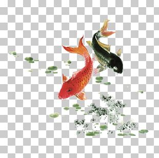 Koi Ink Wash Painting Watercolor Painting Fish PNG