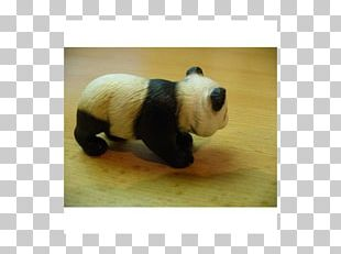 Giant Panda Stuffed Animals & Cuddly Toys Snout Ailuropoda PNG