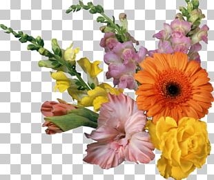 Portable Network Graphics Flower Desktop GIF PNG