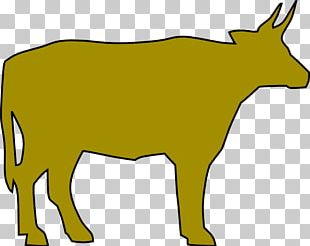 Beef Cattle Calf PNG