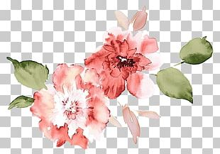 Watercolour Flowers Watercolor Painting Poppy Flowers Watercolor: Flowers PNG