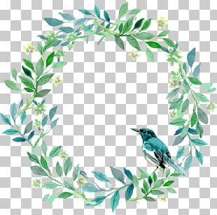 Green And Fresh Grass Ring Bird Decoration Pattern PNG