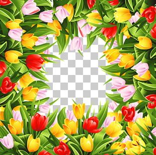 Border Flowers Tulip Stock Photography PNG