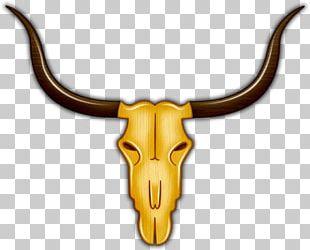 Cattle Antelope Horn Bone PNG