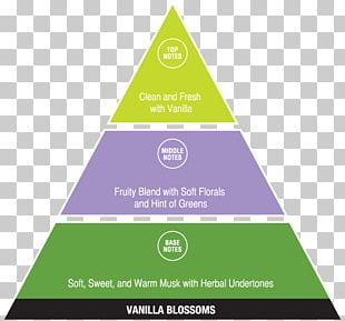 DIKW Pyramid Chart Diagram Infographic Information PNG