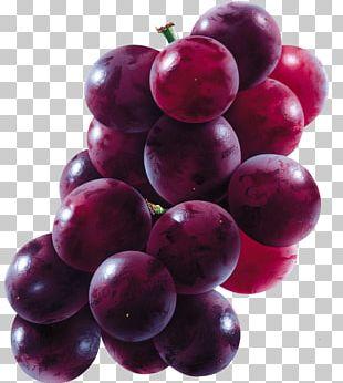 Common Grape Vine Juice Concord Grape PNG
