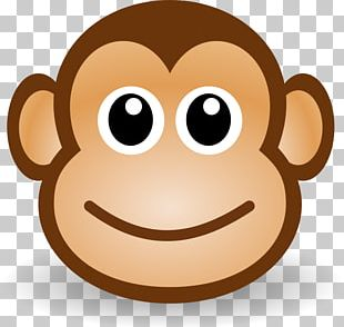 Primate Monkey Drawing PNG