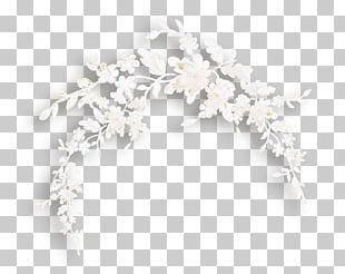 Flower Wreath Crown Jewellery PNG