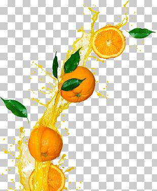 Orange Juice Tangerine Orange Drink Clementine PNG