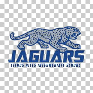 Citrus Hills Intermediate Jaguar Cars Middle School Carnivora PNG