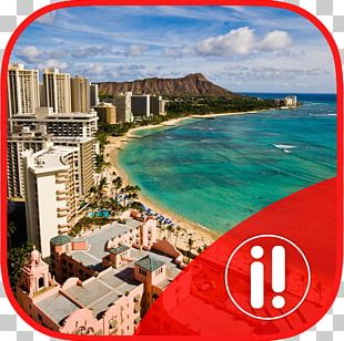 Hilton Hawaiian Village Waikiki Beach Resort Business Class Travel Frequent-flyer Program Vacation PNG