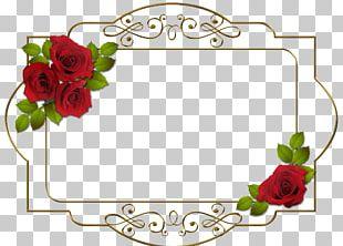 Frame Digital Photo Frame Flower PNG