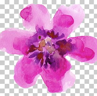 Watercolour Flowers Watercolor Painting Drawing Paper PNG