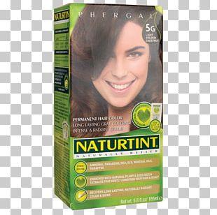 Hair Coloring Human Hair Color Chestnut Naturtint Permanent Hair Naturtint Ammonia Free Hair Colour 150ml PNG