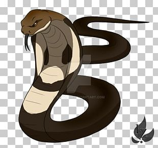 Snake King Cobra Drawing Cartoon PNG