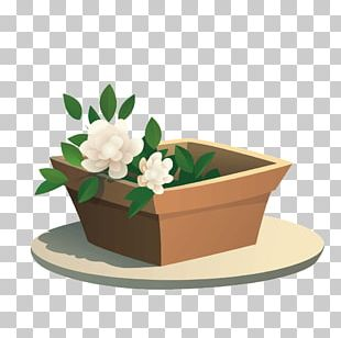 Pots Potted PNG