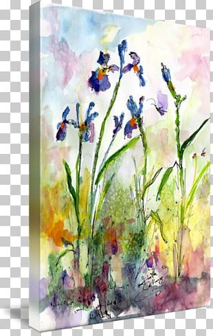Floral Design Watercolor Painting Still Life Acrylic Paint PNG