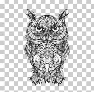Owl Tattoo Drawing Body Art Sketch PNG