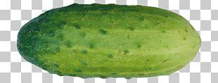 Watermelon Slicing Cucumber PNG