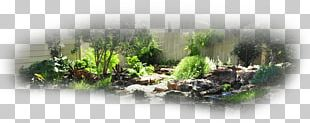Landscape Design Landscaping Irrigation Lawn PNG