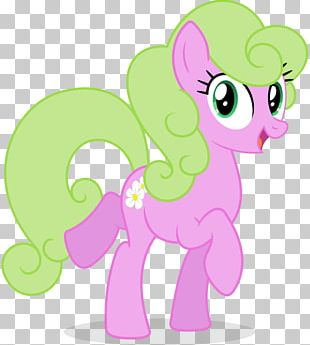 My Little Pony Rainbow Dash Derpy Hooves Rarity PNG