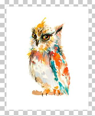 Barn Owl Watercolor Painting Art PNG