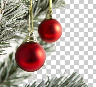 Christmas Ornament Christmas Tree Gift PNG