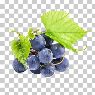 Wine Oolong Grape Seed Extract Proanthocyanidin PNG