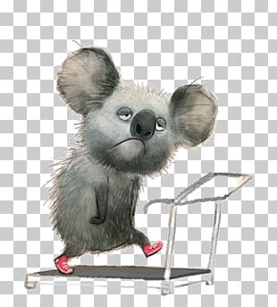 Koala Drawing Illustrator Art Illustration PNG