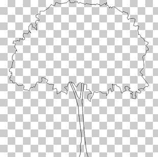 Black And White Drawing Line Art Monochrome Photography PNG