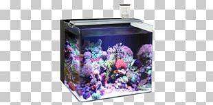 Reef Aquarium Nano Aquarium Light Liter PNG