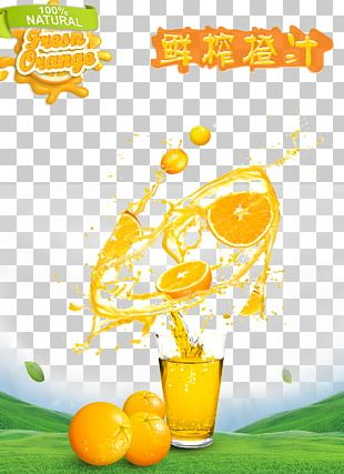 Orange Juice Smoothie Milkshake PNG