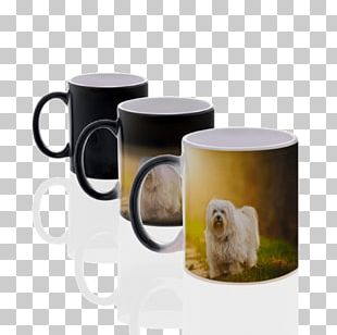 Coffee Cup Mug Teacup Ceramic Tableware PNG
