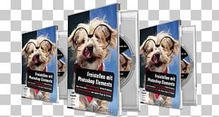 Dog Breed Tutorial Adobe Photoshop Elements Web Page PNG