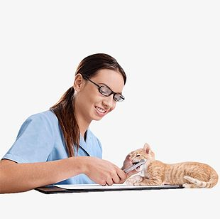 Beauty Pet Doctor PNG
