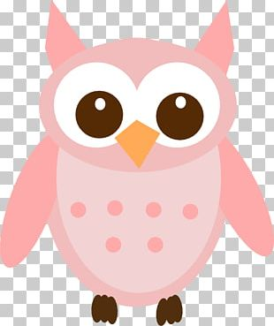 Eastern Screech Owl Great Grey Owl Bird PNG