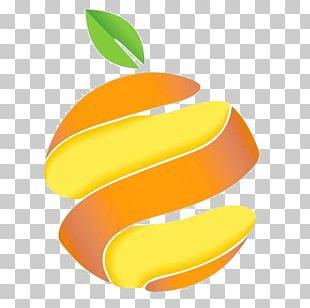 Orange Juice Peel Smoothie Food PNG