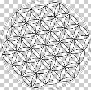 Overlapping Circles Grid Tree Of Life Symbol PNG