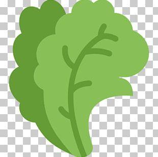 Organic Food Vegetarian Cuisine Computer Icons Vegetable PNG